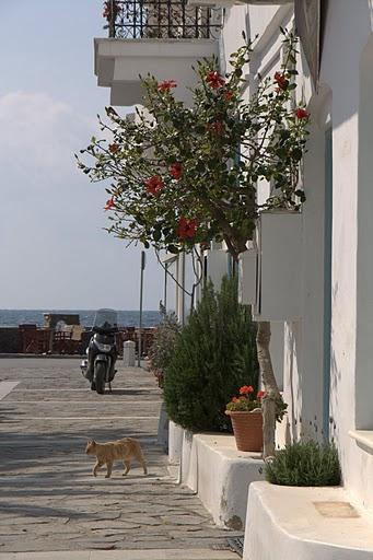 Малка уличка в Парикия, Парос