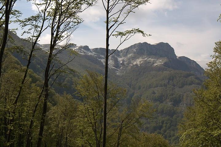 Далечен връх на Пангео