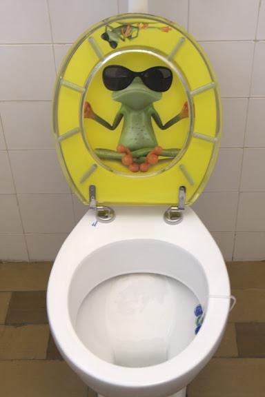 """Зен тоалетна в рибната кръчма """"Зелената жаба"""""""