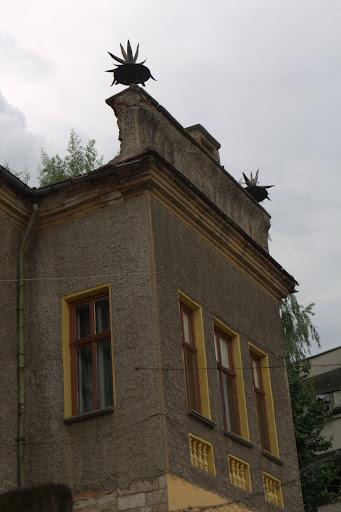 Интересна никополска къща от по-богати времена