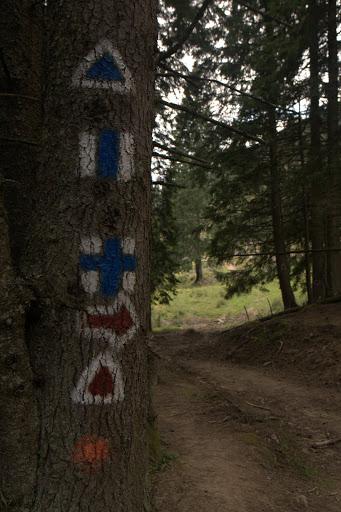Добре маркирана пътека