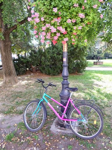 Розовеещото колело