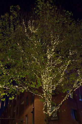 Коледно дърво в Сохо