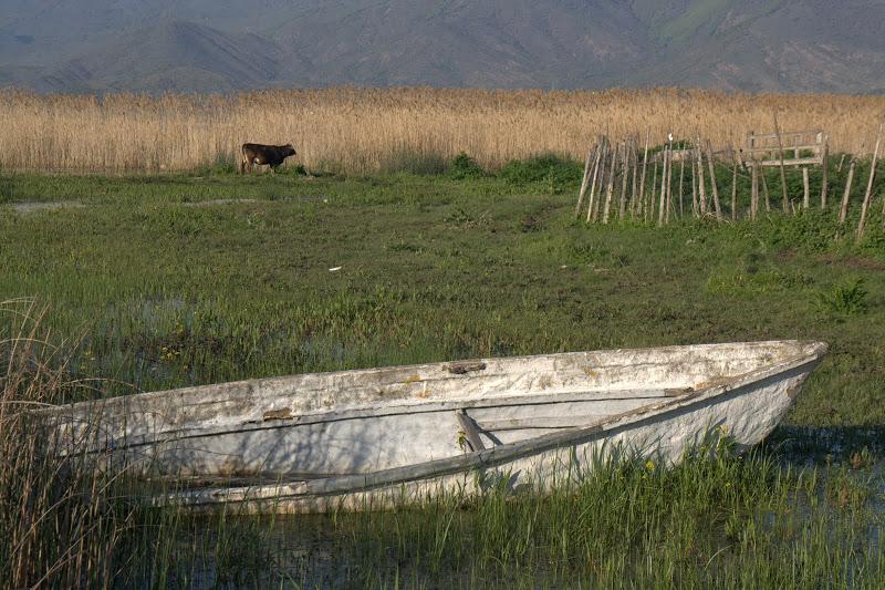 Лодка на острова