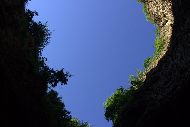 Поглед нагоре