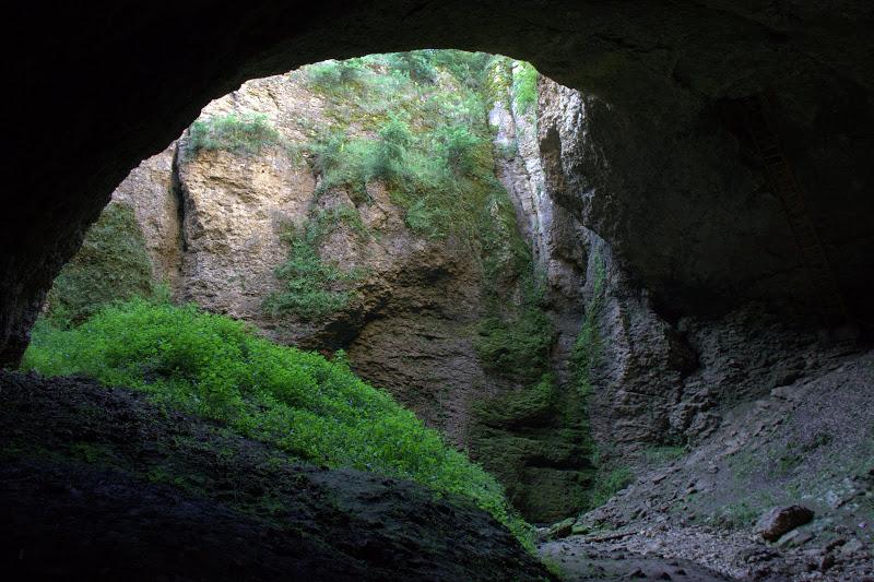 Гарваница - на дъното