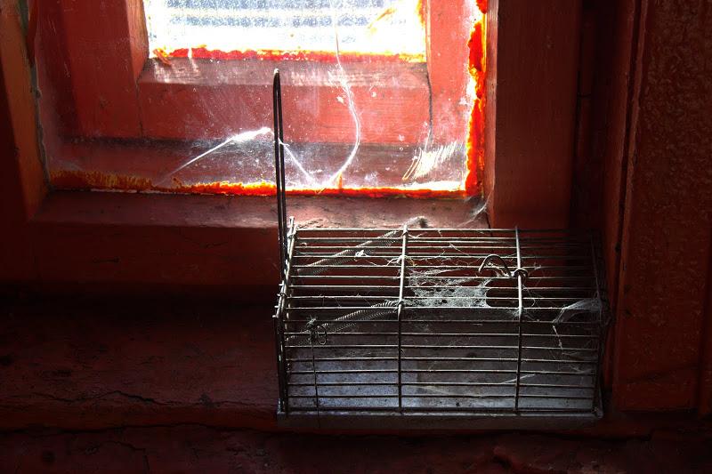 Капанът за мишки на Страшното езеро