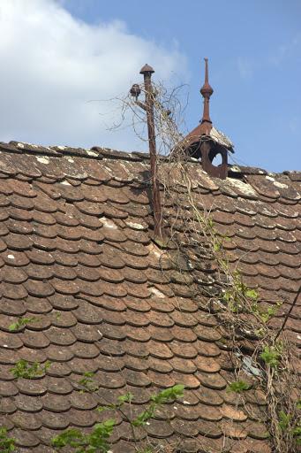 Запуснат покрив