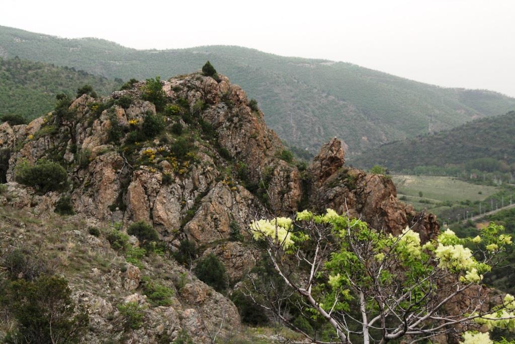 Резерват Тисата над Кресненския пролом