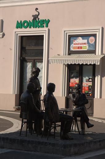 Паметник на местния кръжец унгарски писатели